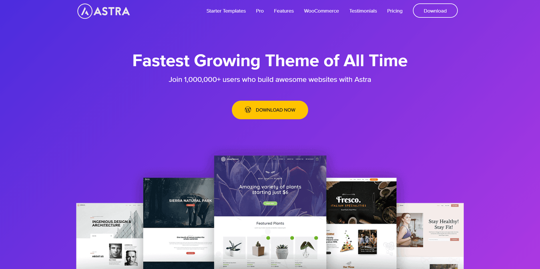 WordPress Multi-purpose themes - Astra