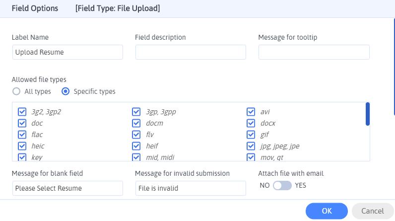 File Upload Field Options